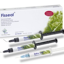 Fisseal / Силант фото - W+P Dental